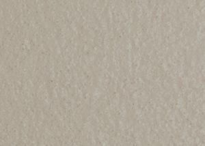 Échantillon de couleur beige uni B504